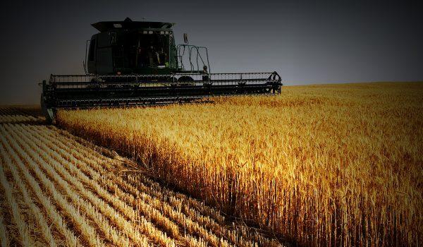 Tarım Programı